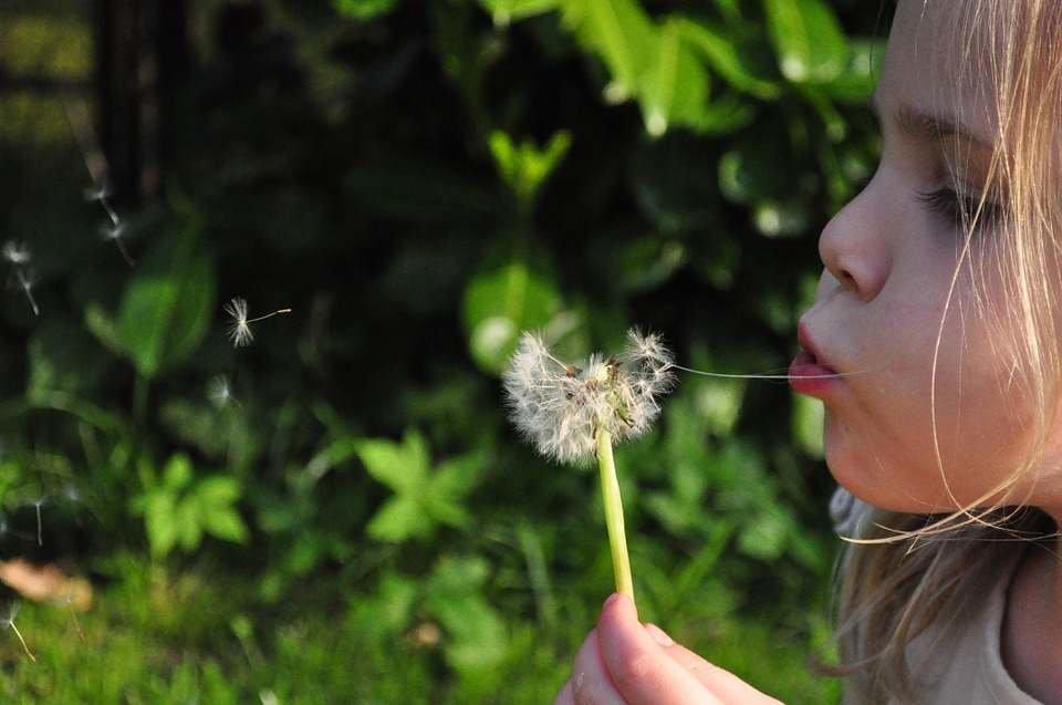 La alergia y la primavera en León