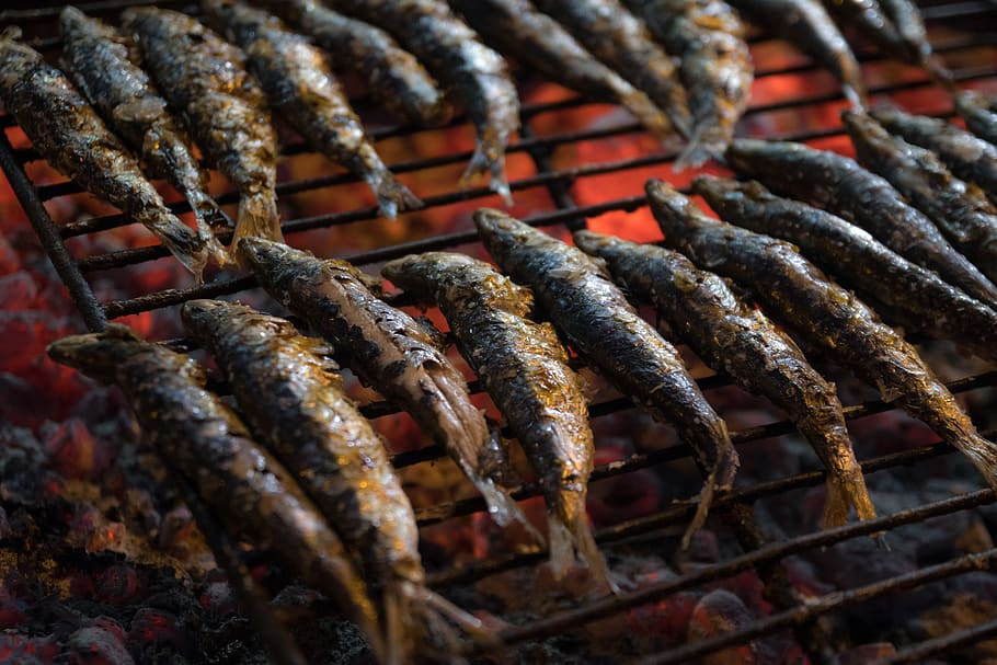 sardines-restaurant-food-fresh